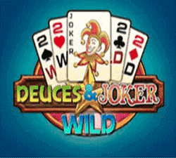 Deuces Wild Joker